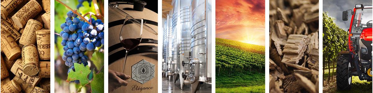 Firma Winetech